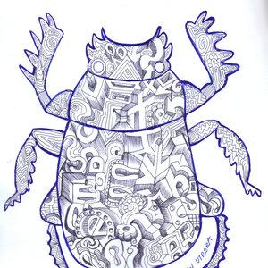 escarabajo01_308802.jpg