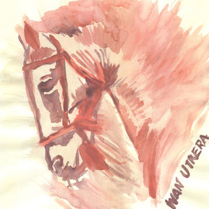 horse01_309020.jpg