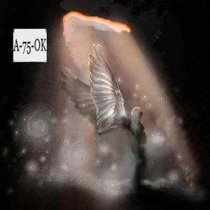 FOSO_309521.jpg