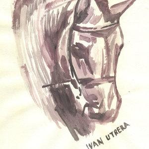 horse0_309618.jpg