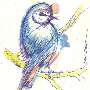 bird13_310623.jpg