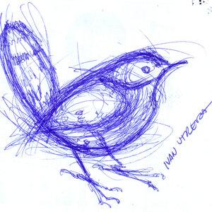 bird22_310781.jpg