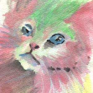 cat07_310907.jpg
