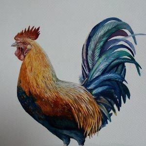The_weeping_rooster_311616.jpg