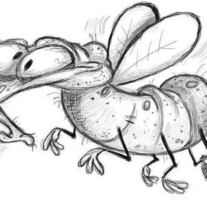 Ernesto, la mosca que no sabe que es mosca