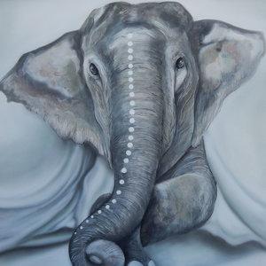 elefante_354372.jpg
