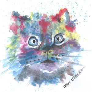 cat03_354697.jpg