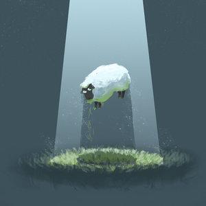 2_sheep_355320.jpg
