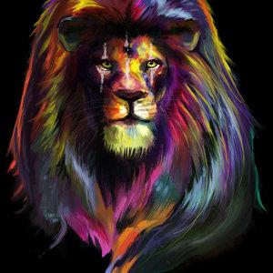 LION_357162.jpg