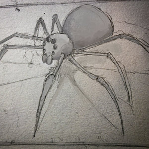 sketch rapido! ARAÑaA?