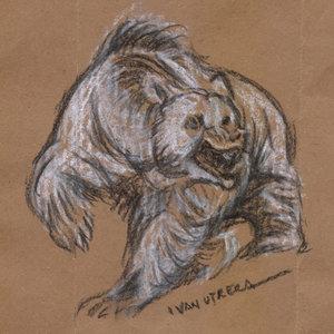 bear04_345025.jpg
