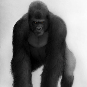 The great gorilla