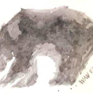 bear07_345273.jpg