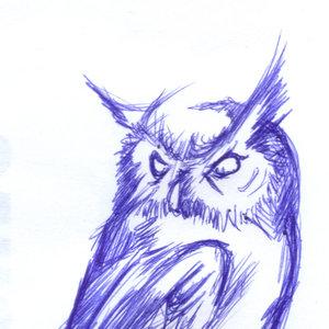 owl07_364064.jpg