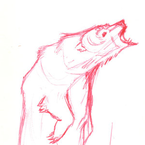 bear06_345498.jpg