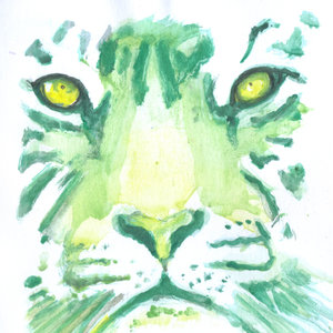 tiger14_345499.jpg