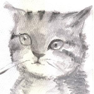 cat21_364743.jpg