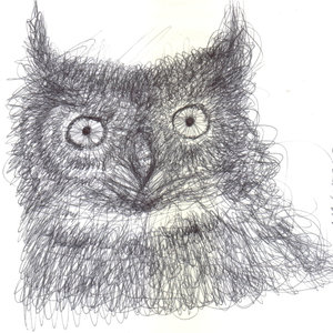 owl02_364767.jpg