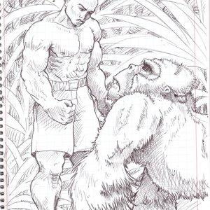 gorilla_365236.jpg