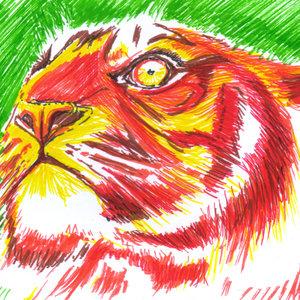 tiger13_345606.jpg