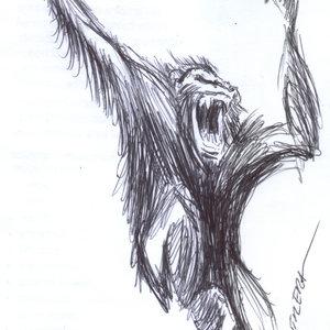chimpance_366874.jpg