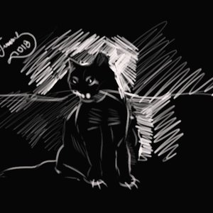 cat_367107.jpg