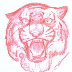 tiger10_345890.jpg