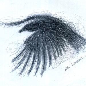 bird09_345939.jpg