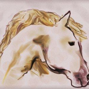 caballo5_369252.jpg
