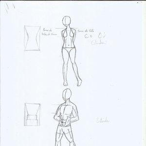 AnatomYua_humana_369726.jpg