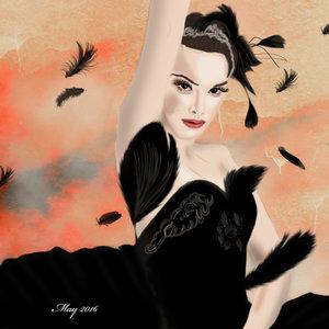 Black_swan_369808.jpg