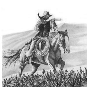 cowboy_370612.jpg