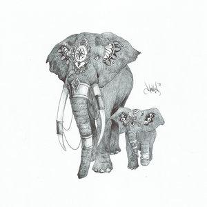 Elefantes_371071.jpg