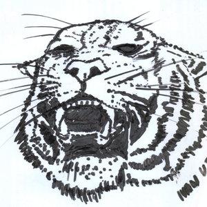 tiger04_346541.jpg