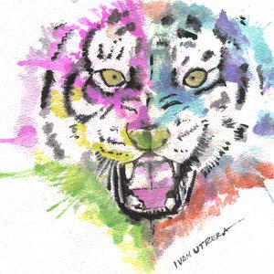 tiger05_346502.jpg