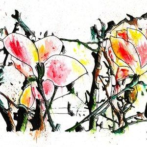 flores_377277.jpg