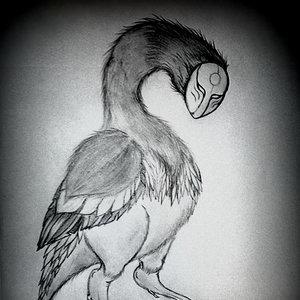 El ave del purgatorio.
