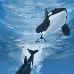 Orcas paisaje