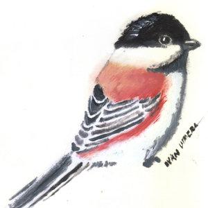 bird25_347395.jpg