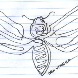 butterfly_348033.jpg
