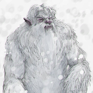 Yeti_Color_Cara_348663.jpg