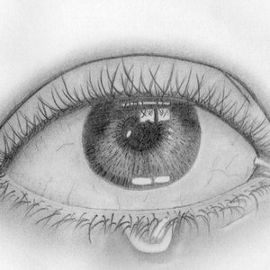 ojo_350001.jpg