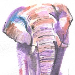 elephant02_392927.jpg