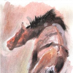 horse07_392933.jpg