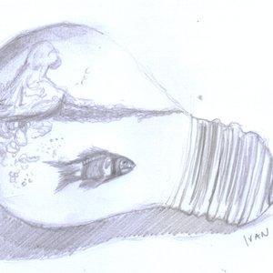 fish_393032.jpg