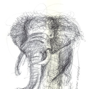 elephant03_393480.jpg