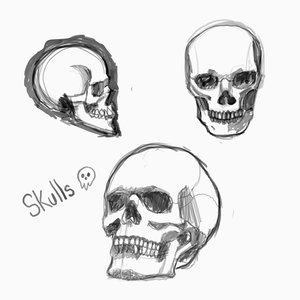 skulls_382179.png