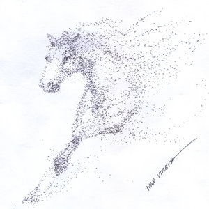horse04_393698.jpg
