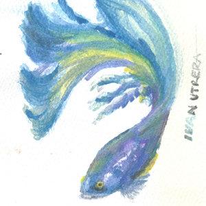 fish03_394007.jpg
