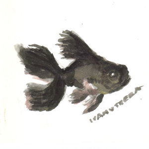 fish06_395399.jpg